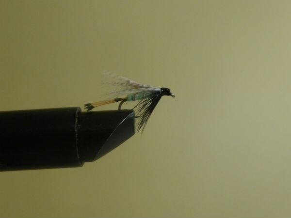 Teal green slaney fishing fly fishing ireland for Teal fishing pole