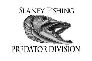 Slaney fishing